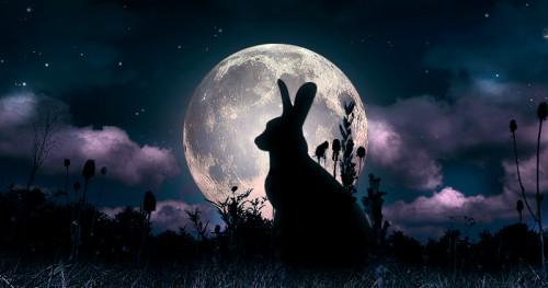 Luna della lepre