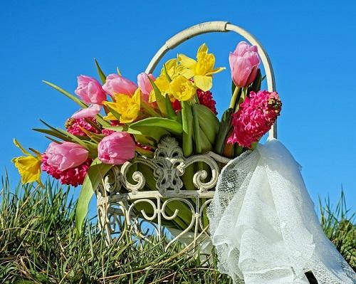 tulipani-festival