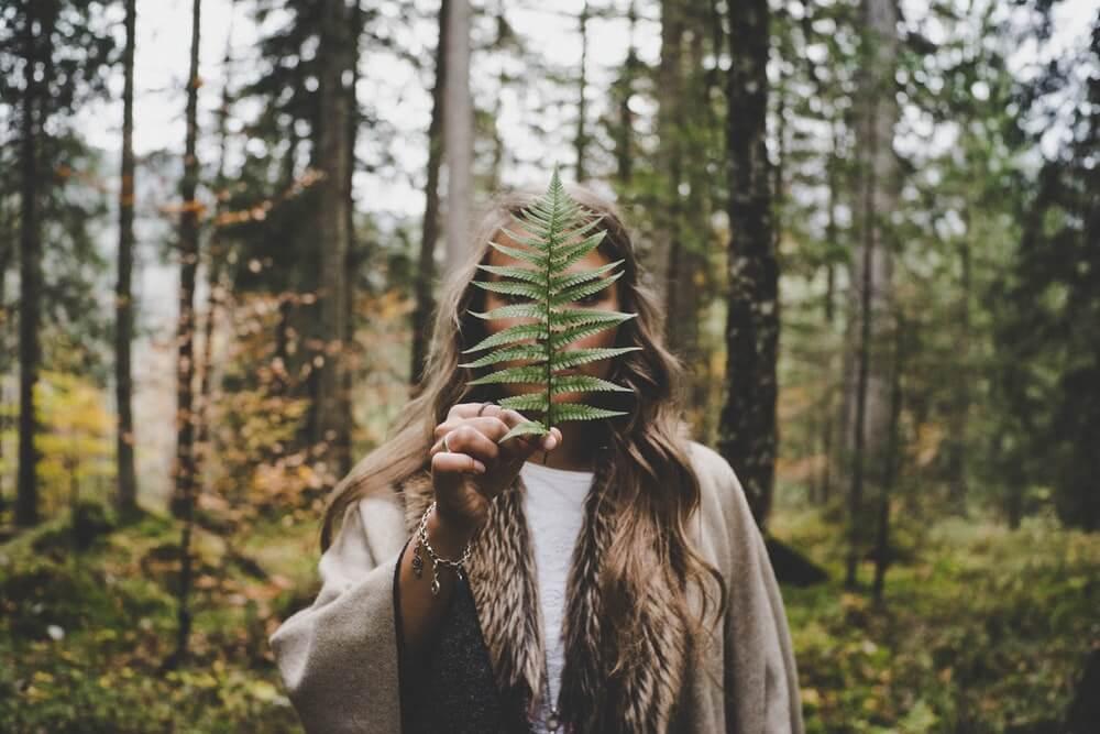 guarire l'albero genealogico