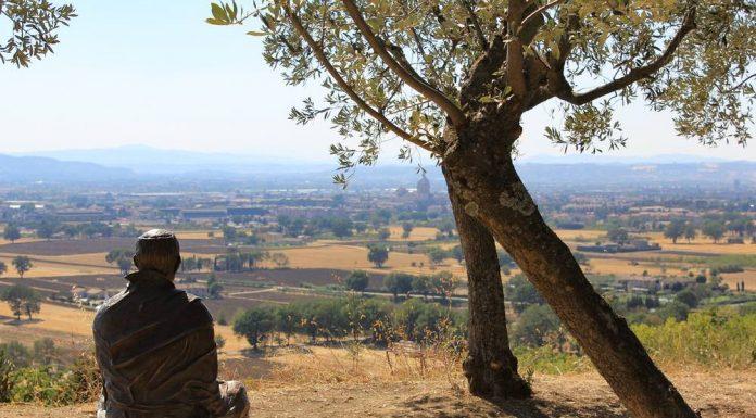 Cammino Di Assisi