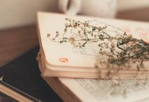 libro di poesie