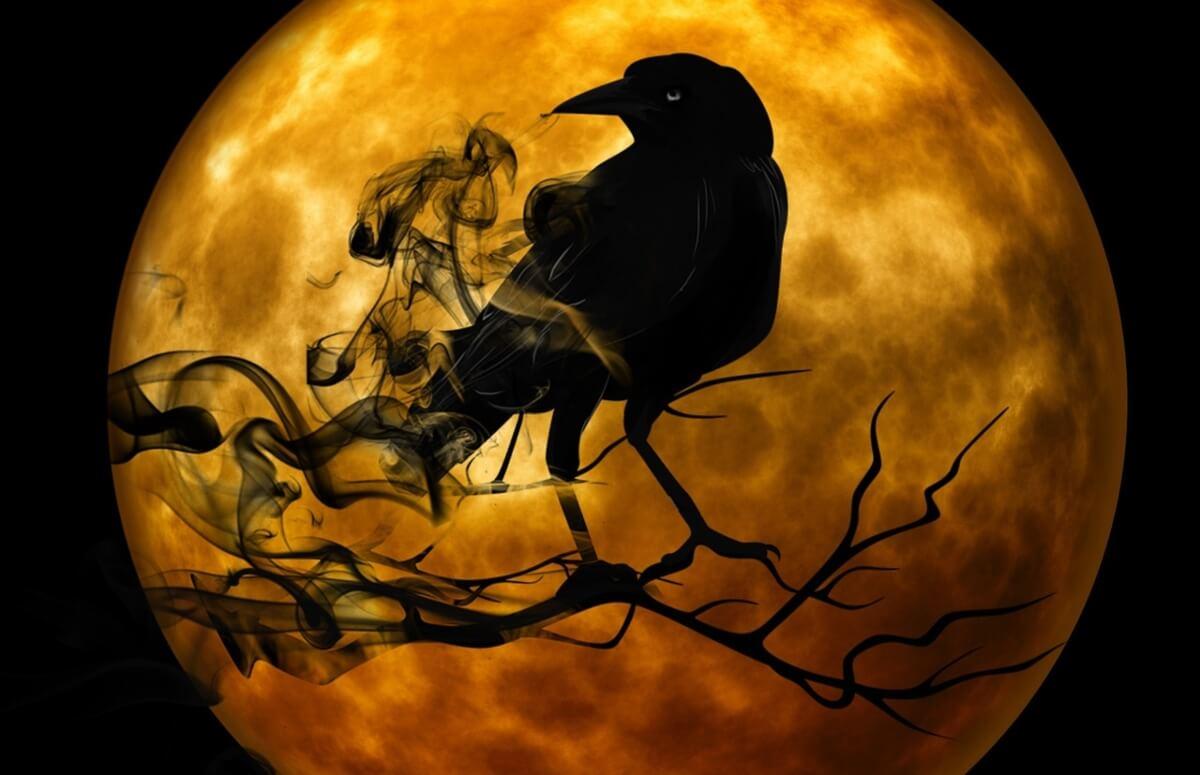 leggenda-nativa-americana-di-rainbow-crow-il-corvo-arcobaleno