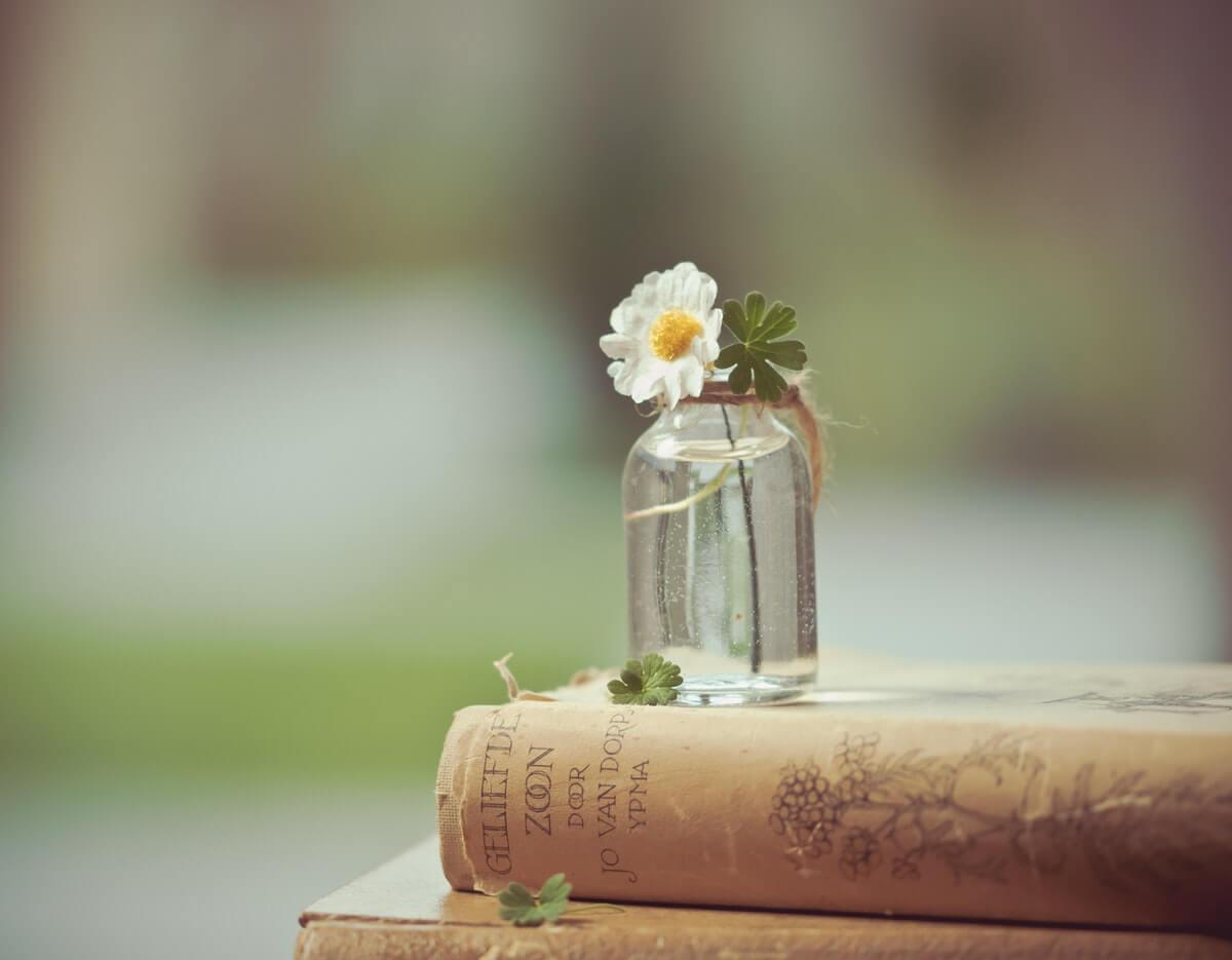 libri-di-poesia-e-margherita