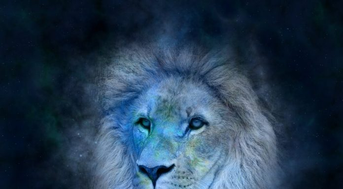 segno-del-zodiaco-leone